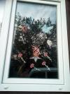 Акцию с  названием «Окно Победы» в преддверии 9 мая проводят активисты Российского движения школьников