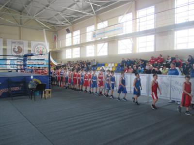 Открытие XI межрегионального турнира по боксу,